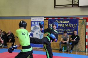 kickbox landesmeisterschaft 2019 18 20190211 1604122435